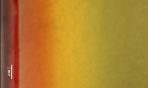 PH Dye